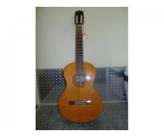 Brand New Guitar on Rental in Madanpur